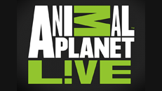 13780904 40ec 4f69 bf06 257f463e6ae9gnanimal planet live logo sg animal planet lve app on xbox 360 ccuart Images