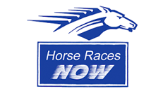 Horse Races Now app on Xbox 360